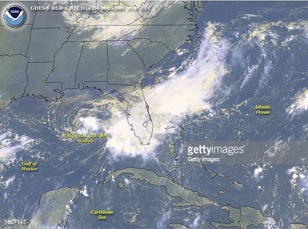 Tropical Storm Barry hits the US Gulf Coast in this satellite image released August 5 2001 The storm has doused the Florida panhandle and is expected...