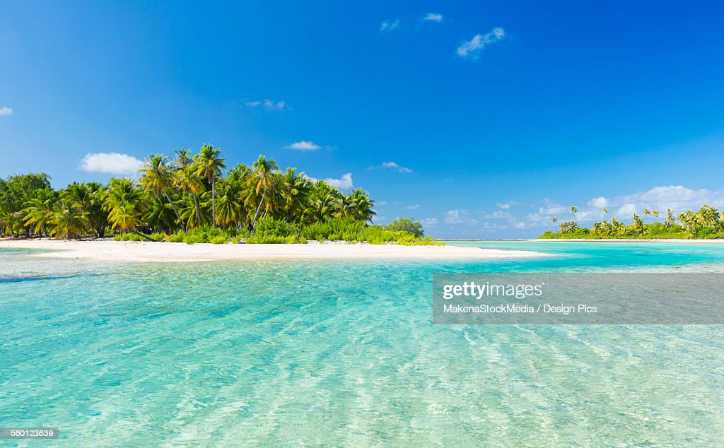 Tropical sunny island with palm trees and blue ocean