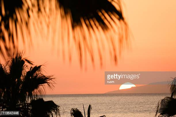 Tropical sunset, Canary Islands