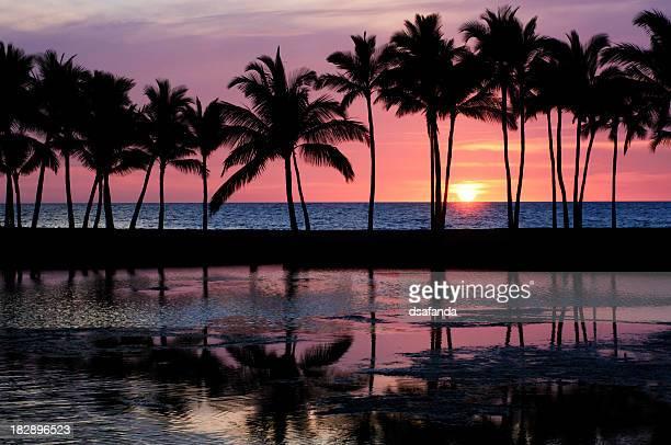 熱帯の日没