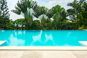 Tropical swimming pool surrounded by trees