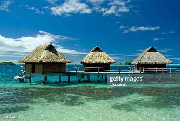 Vacances sous les tropiques