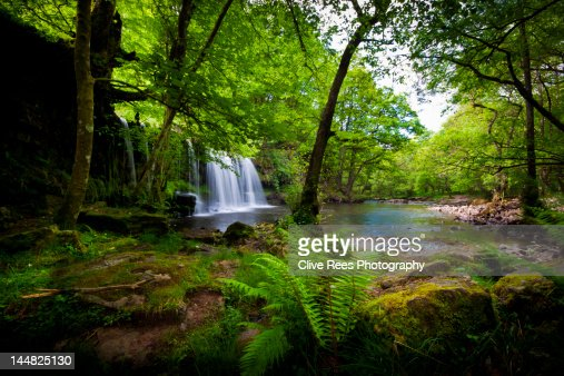 Tropical waterfall : Stock Photo
