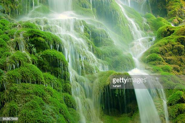 Cascade tropicale