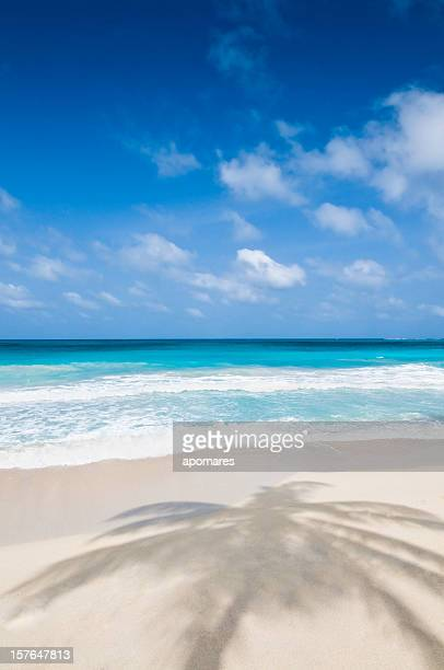 Tropischen Strand mit weißem sand.