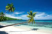 Three palm trees line a white, tropical sand beach highlighted by a beautiful deep blue sky.