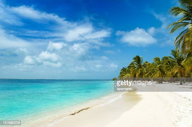 Tropical white sand island beach
