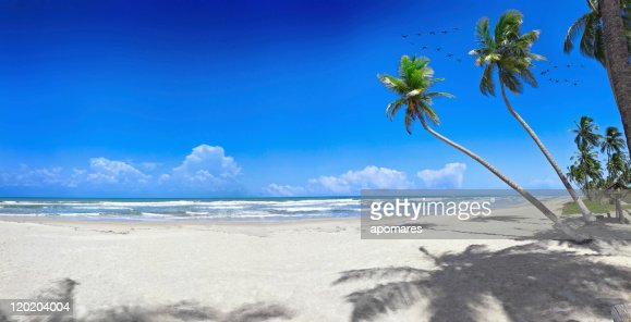 Tropical white sand virgin beach : Stock Photo