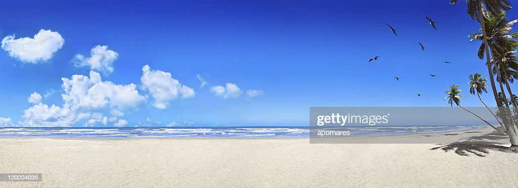 Tropicale plage de sable blanc vierge : Photo