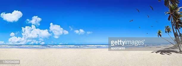 Spiaggia di sabbia bianca tropicale Vergine