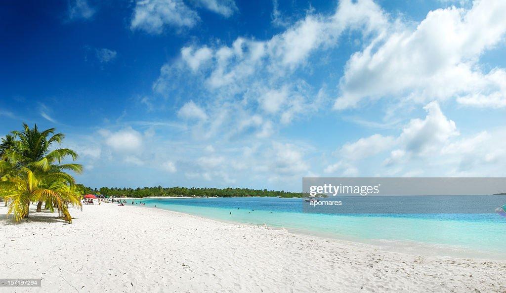 Tropical white sand virgin beach : Stock Photo
