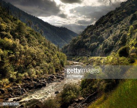 Trout Stream in Mountain Landscape
