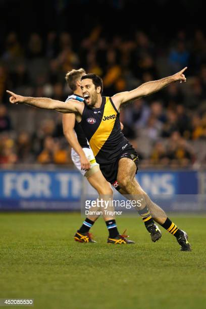 Troy Chaplin of the Tigers celebrates a goal during the round 17 AFL match between the Richmond Tigers and the Port Adelaide Power at Etihad Stadium...