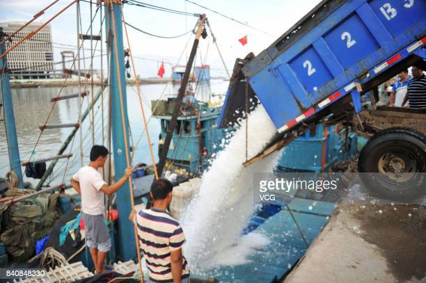 A truck adds ice cubes to fishing vessels at a fishing port on August 30 2017 in Qingdao Shandong Province of China Fishing ban started from May 1 on...