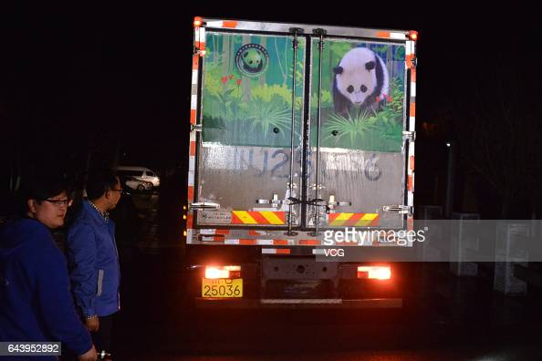 A truck carrying Americaborn giant panda Bao Bao arrives at Dujiangyan Panda Base on February 22 2017 in Chengdu Sichuan Province of China Bao Bao a...