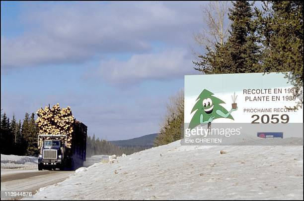 Truck 'Hors Route' Transport Of Wood Saguenay In Quebec Canada In 2000Each year we replanted 150 000 million trees in Quebec 150 million trees are...