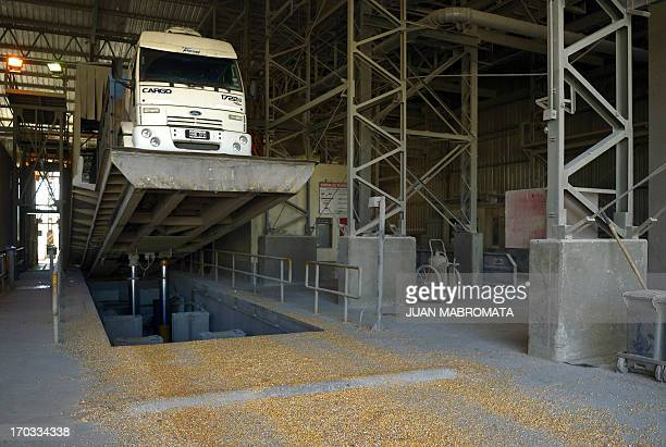 A truck is lifted to unload soybeans at the General San Martin port in the Parana river banks near San Lorenzo Santa Fe some 350 km northwest of...