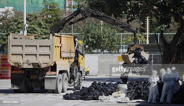 A truck is used to take away bags of dead chickens after they were culled in Hong Kong on December 31 after the deadly H7N9 virus was discovered in...