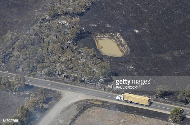 A truck laden with fodder races to feed cattle after wildfire destroyed nearly all available feed and fodder stores in Bunyip West Gippsland some...