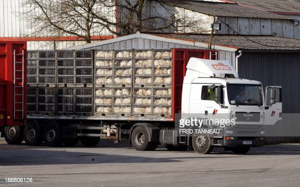 A truck loaded with fowls is parked at the site of the French group Doux factory in Pleucadeuc western France on April 17 2013 The world's...