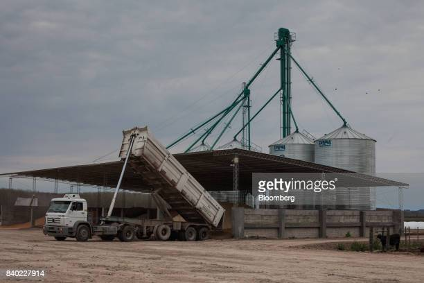 A truck unloads feed supplement to a storage area at the Agro Holanda SA feedlot in Zarate Argentina on Monday Aug 7 2017 Argentina a major cow meat...