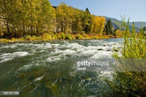 トラッキー川、リノ、秋