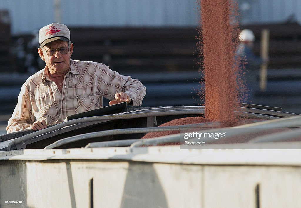 A trucker watches as potash is loaded onto a truck from a river barge at the Bussen Terminal along the Mississippi River in St. Louis, Missouri, U.S. on Friday, Nov. 30, 2012. The rush is on to keep customers supplied, workers employed and commerce alive in communities that rely on the nation's busiest waterway. The usual dry season, combined with the worst drought in 50 years, may push water levels so low in coming weeks it will halt traffic in a section south of St. Louis, near the river's midpoint. Photographer: Whitney Curtis/Bloomberg via Getty Images