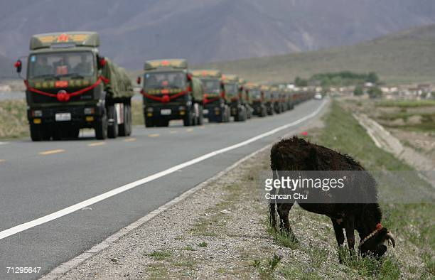 Trucks of the Chinese army carry goods along the QinghaiTibet road next to the QinghaiTibet Railway on June 25 2006 on the skirts of Lhasa Tibetan...