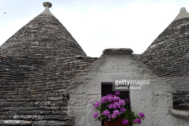 Trulli are seen in Alberobello in the Puglia region southEast of Italy on May 7 2013 A trullo is a traditional Apulian dry stone hut with a conical...