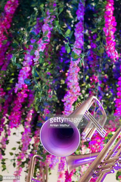 Trumpet set against colorful flowers