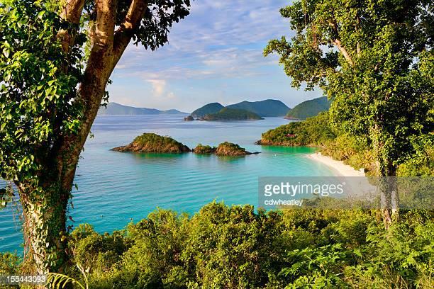 トランクベイ、セントジョン、米領バージン諸島のカリブ