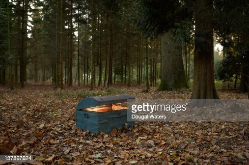 Trunk in woodland with glow inside.