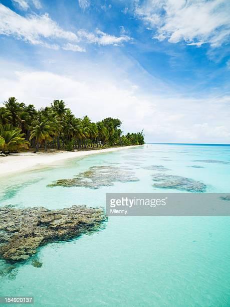 Tuamotu Archipelago Fakarava French Polynesia Paradise Beach