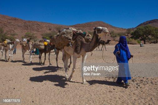 Tuareg accompanying a camel caravan