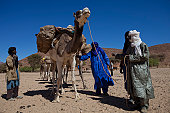 Tuareg and camel caravan