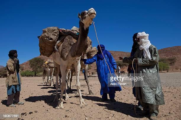 Tuareg and camel caravan