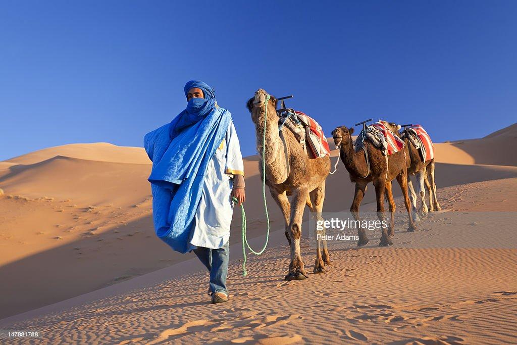 Tuareg Man & Camels, Erg Chebbi, Sahara Desert
