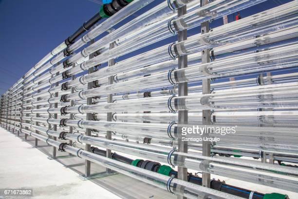 Tubular bioreactors filled with green algae fixing CO2