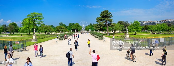 Tuileries Garden : Stock Photo
