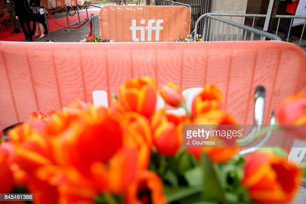 Tulip display at the premiere of 'Tulipani Love Honour And A Bicycle' during the 2017 Toronto International Film Festival at Ryerson Theatre on...