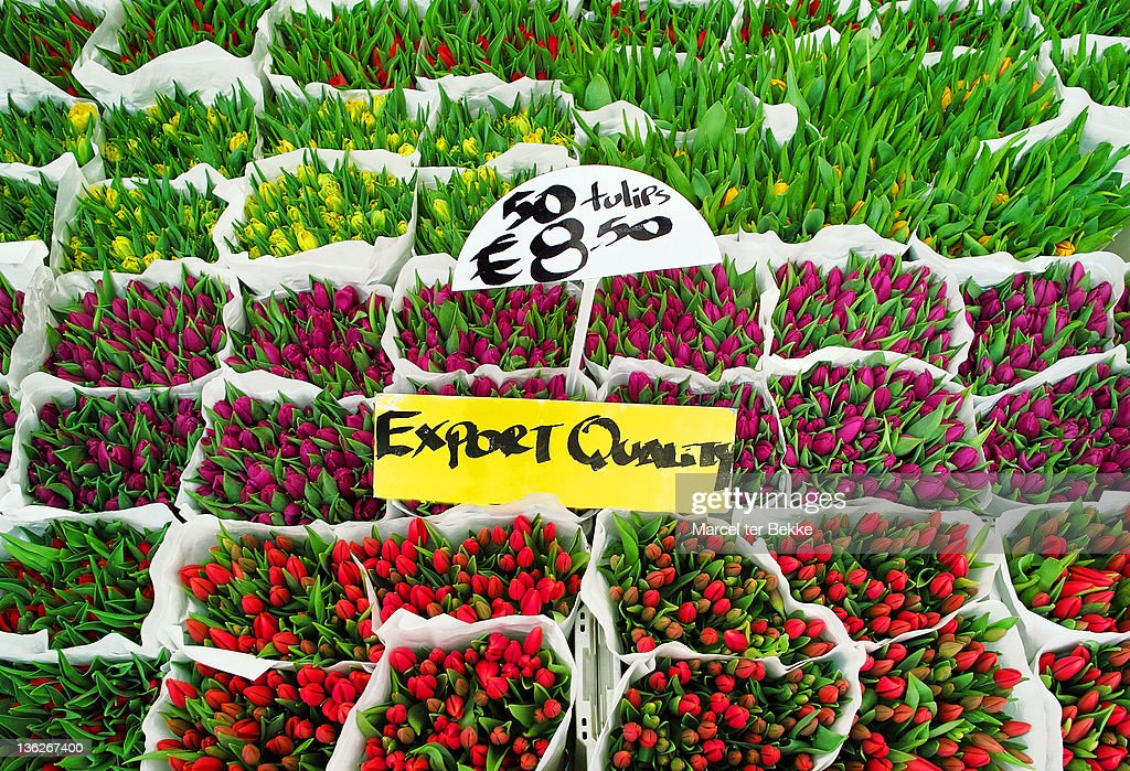 Tulips flowers for sale in market : Stock Photo