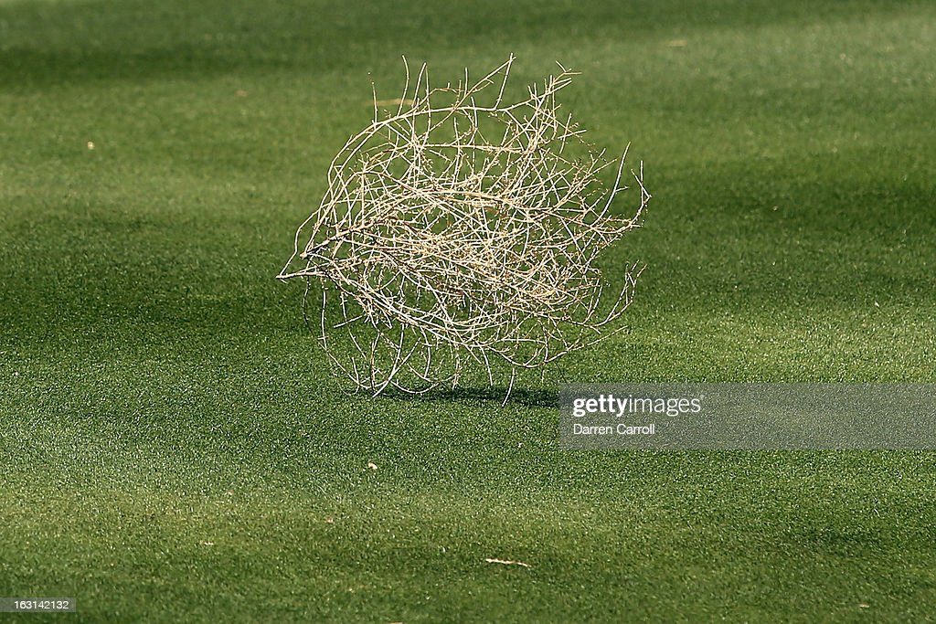 Tumble weed blows down the seventh fairway during the final round of the World Golf Championships - Accenture Match Play at the Golf Club at Dove Mountain on February 24, 2013 in Marana, Arizona.