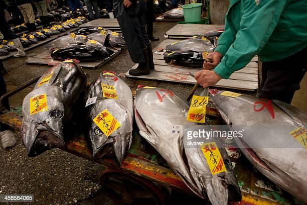 Thon poissons du marché de Tokyo