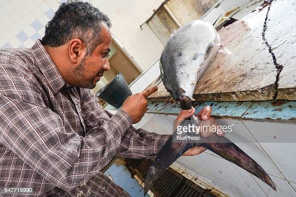 A tuna vendor during his work inside a local fish market On Saturday February 18 in Samail Ad Dakhiliyah Region Oman