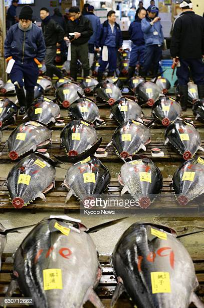Tunas are displayed ahead of an auction at Tokyo's Tsukiji fish market on Jan 5 2016 The relocation of the market to the nearby Toyosu area scheduled...
