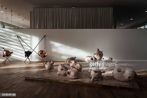 Tunga at Inhotim Contemporary Art Institute on September 7th in Brumadinho Minas Gerais Brazil