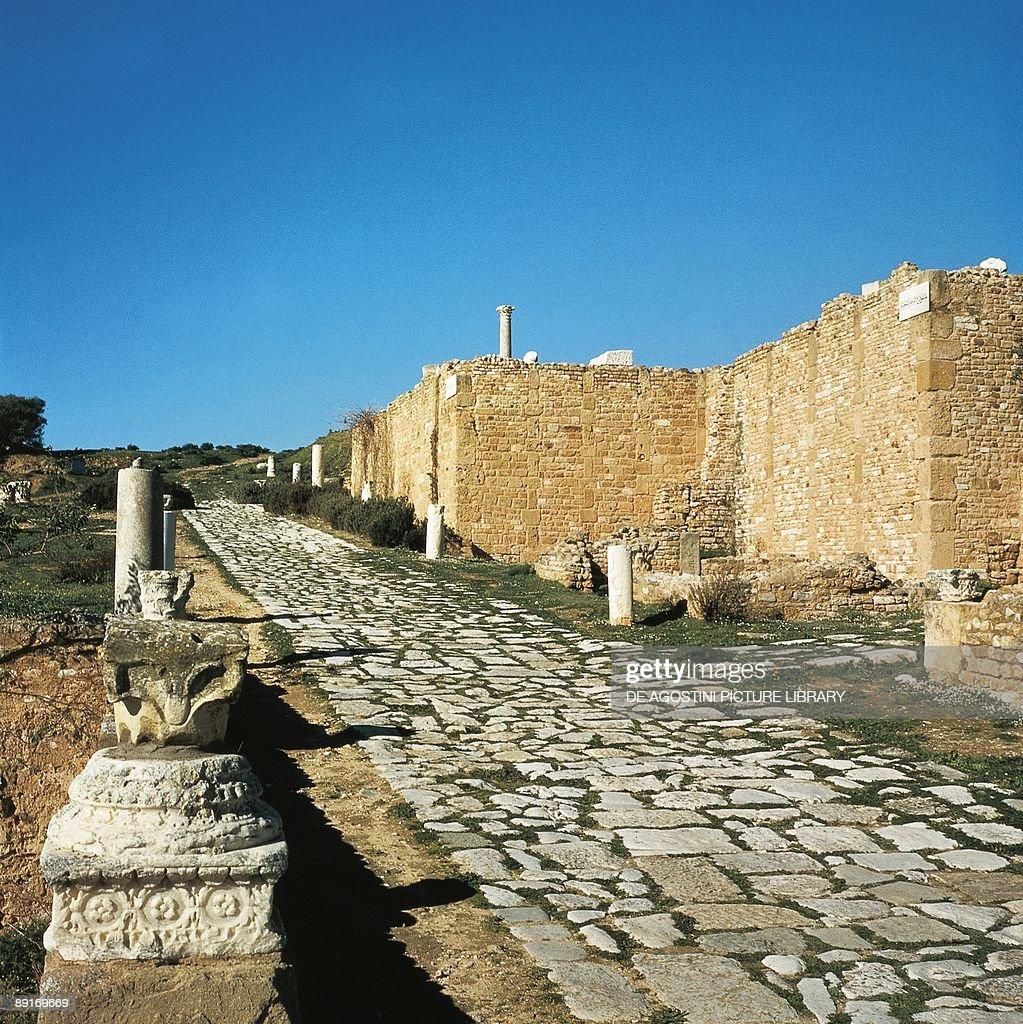Tunisia, Carthage (UNESCO World Heritage List, 1979). Ruins of the Roman city