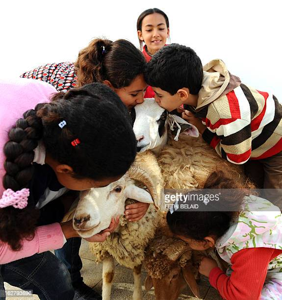 Tunisian children play with sheeps on the first day of the Muslim holiday of Eid alAdha on November 16 in Tunis Eid alAdha the Festival of Sacrifice...