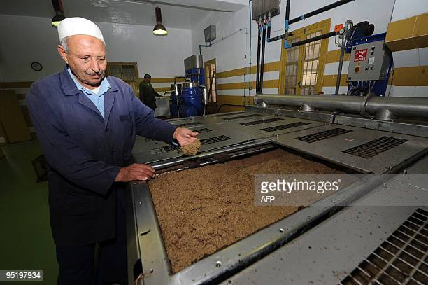 A Tunisian technician checks the olive oil residue in a factory at the start of the annual olive harvest on December 24 2009 in Ariana near Tunis...