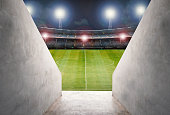 3d rendering tunnel in stadium with green field
